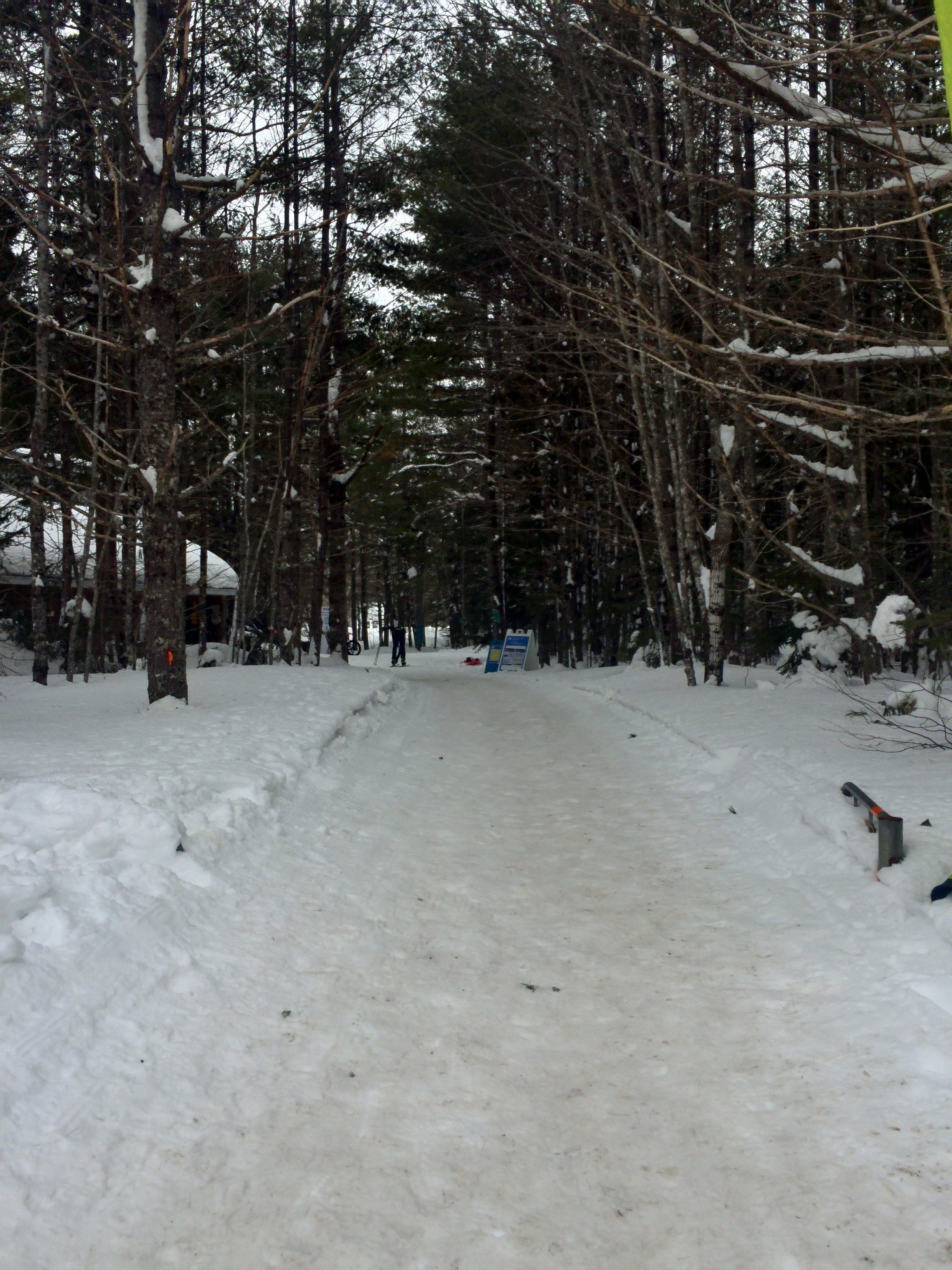The snow was packed down nicely for the fat bikes.