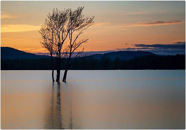 Every sunset is an opportunity to reset. 🌲#gridlesslife 🌲 .⠀ Featured 📷 by @pete.lavigne ⠀ .⠀ .⠀ .⠀ .⠀ #earthfocus ⠀ #adventuregram ⠀ #newbrunswick ⠀ #explorenb ⠀ #moodygrams ⠀ #sunset⠀ #artofvisuals ⠀ #wildernessnation ⠀ #explorecanada⠀ #earthoutdoors ⠀ #exploremore⠀ #folkscenery ⠀ #keepitwild ⠀ #exploretocreate ⠀ #imagesofcanada ⠀ #wildernessculture ⠀ #destinationnb ⠀ #greatnorthcollective ⠀ #landscapephotography⠀ #stayandwander⠀ #eastcoast⠀ #atlanticcanada #sunsetlover  #stokedculture  #thenortheastcollective  #greatnorthcollective