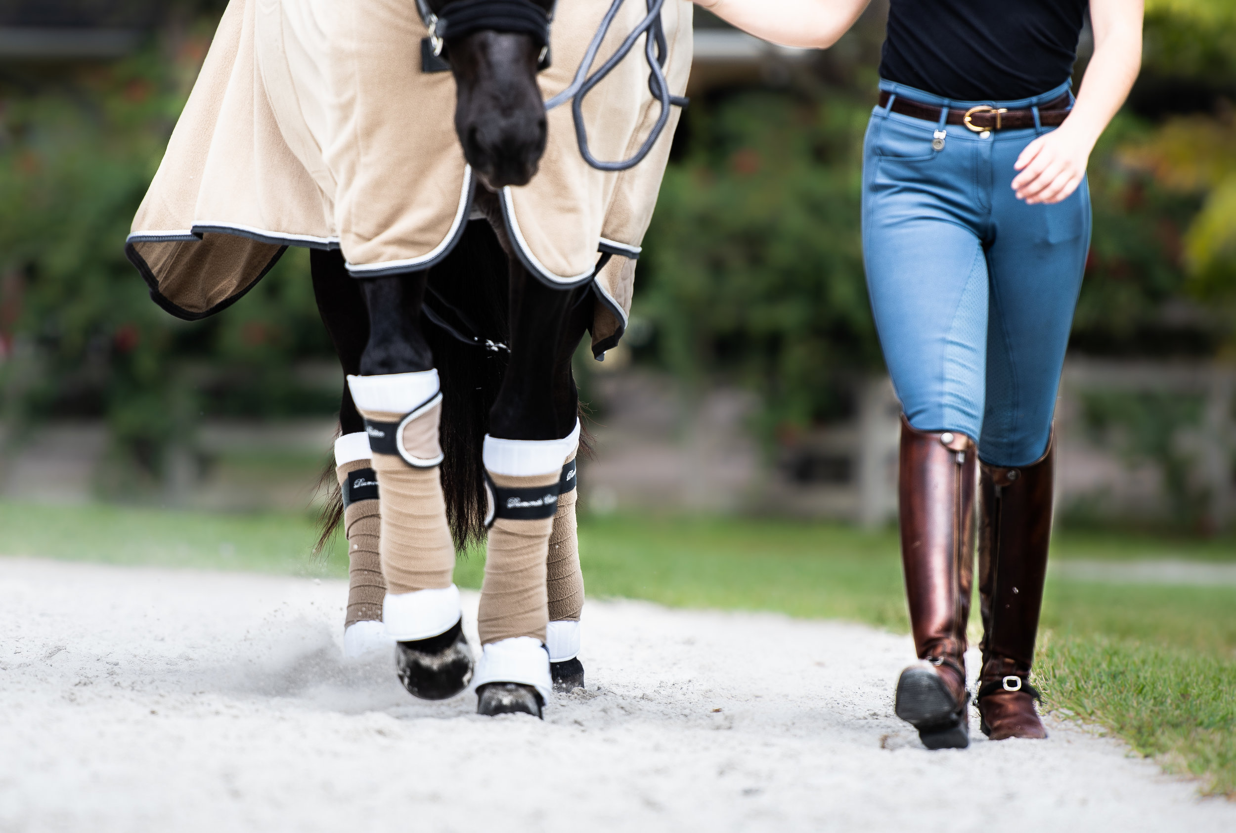 The Equestrian Boutique - Largest Online Selection of HKM Products In The USA