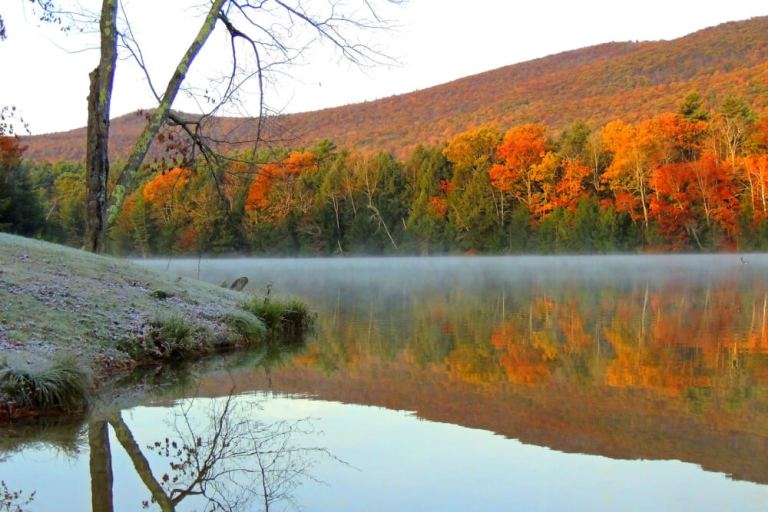 An autumn view from the beach at Lake Shaftsbury State Park
