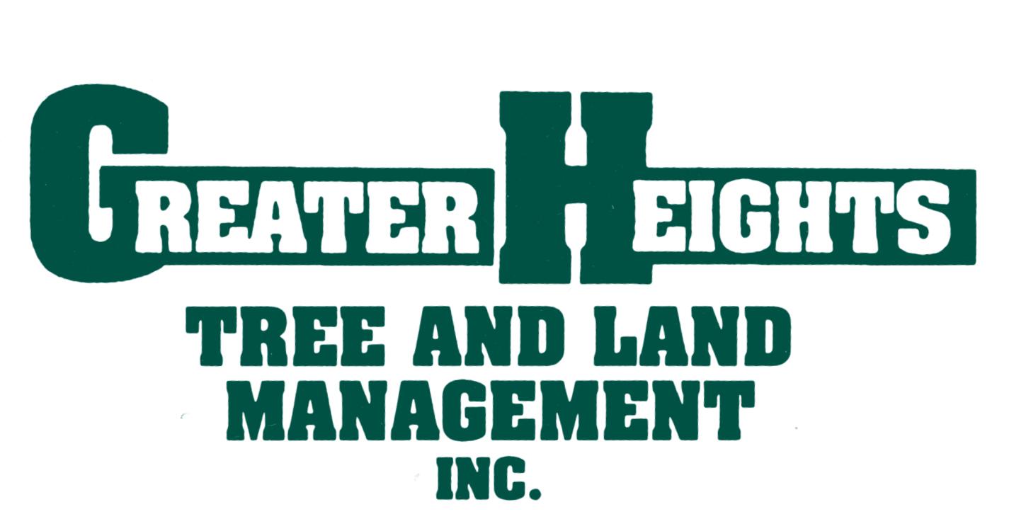 logo front green.jpg