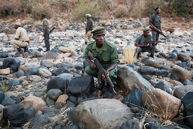 Today is World Ranger Day.   Every day, these brave men and women pour their hearts and souls into protecting some of the last true wildernesses that remain on Earth. In doing so, they are risking their lives so that in the future we may live on a planet where elephants, lions, and other awe-inspiring creatures still roam wild. Take a moment today to reflect on the work of these fearless soldiers, fighting in the name of Mother Nature, and think about how you can support the amazing work of organizations like @conservation_lower_zambezi and Zambia's Department of National Parks and Wildlife.