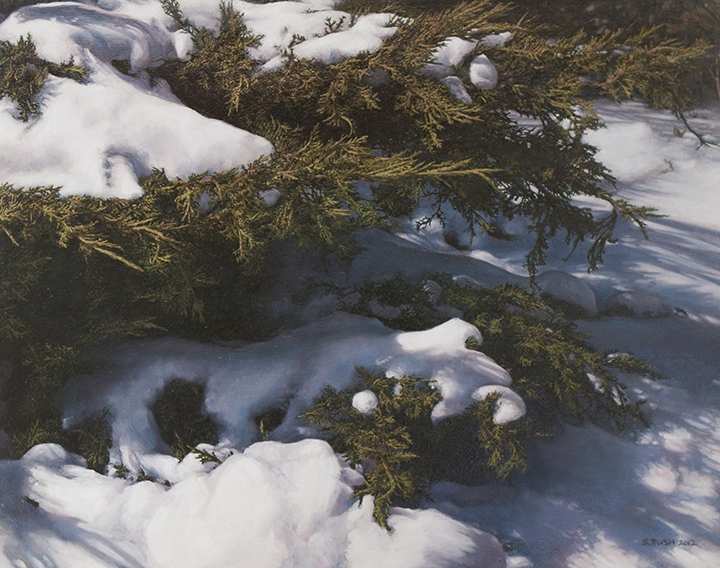Winter (Boughs), oil on canvas, 22 x 28, SOLD