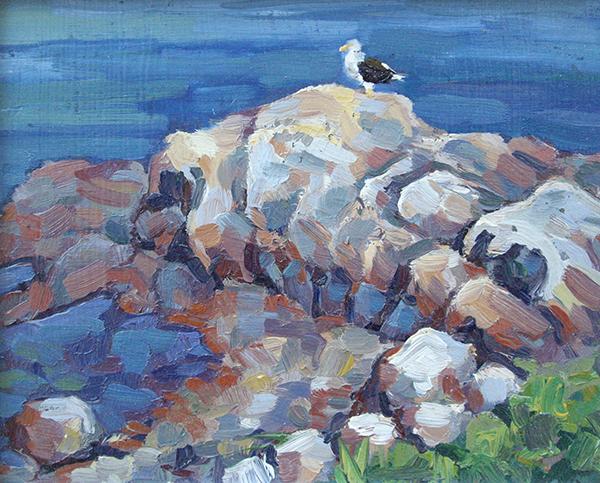 Seagull, oil on panel, 5.5 x 7, $400 framed