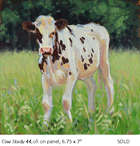 Cow Study 44_t4.jpg
