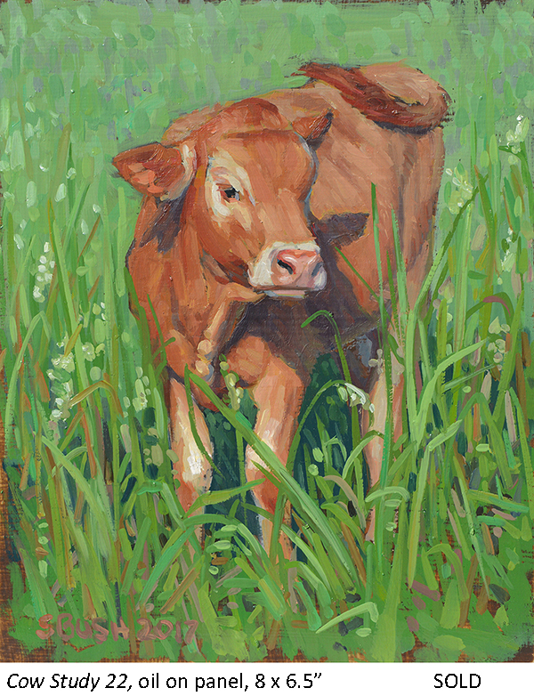 Cow Study 22_t4.jpg