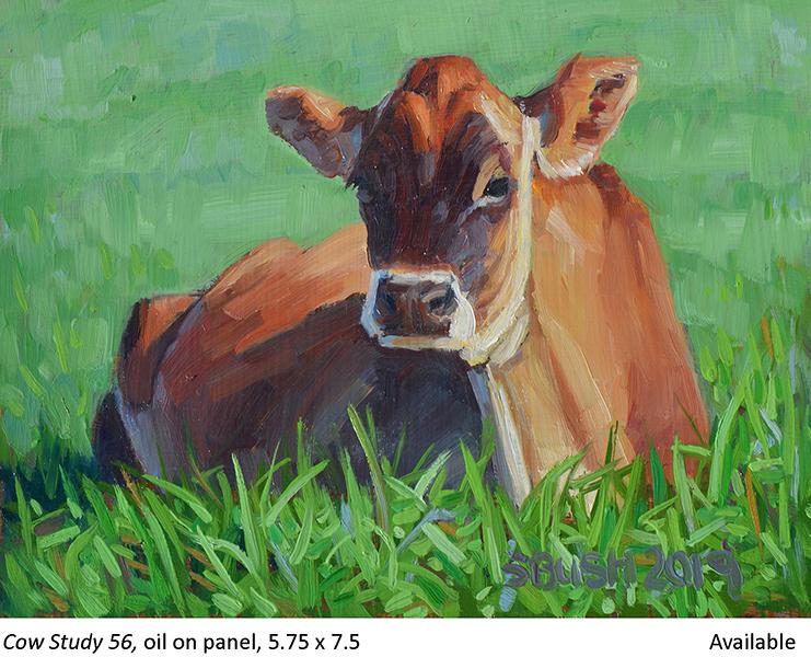 Cow Study 56_t2.jpg