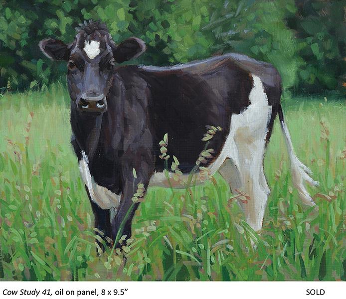 Cow Study 41_t4.jpg