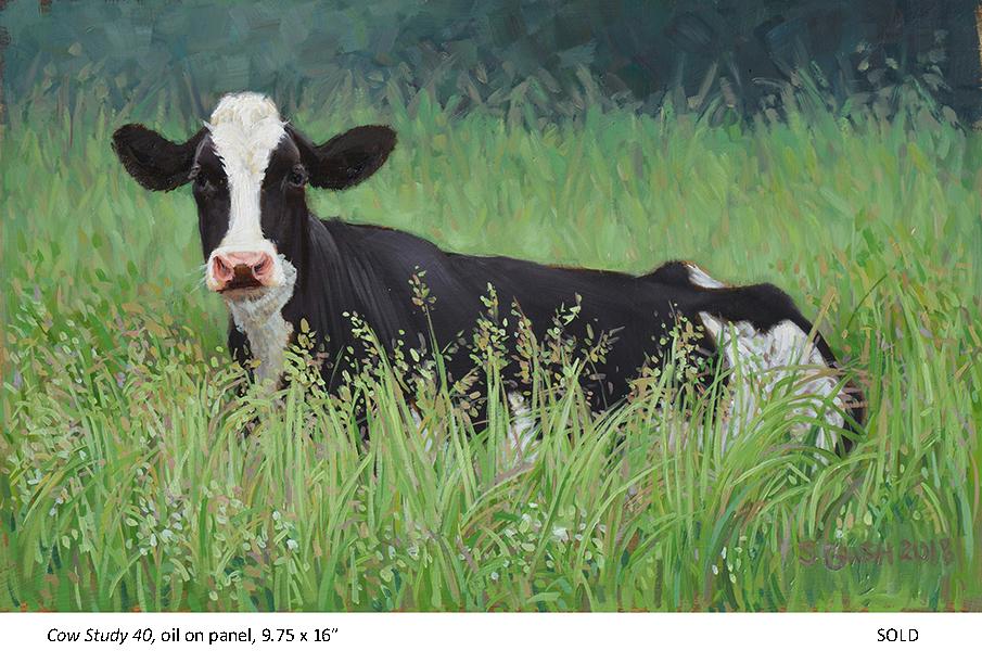Cow Study 40_t4.jpg