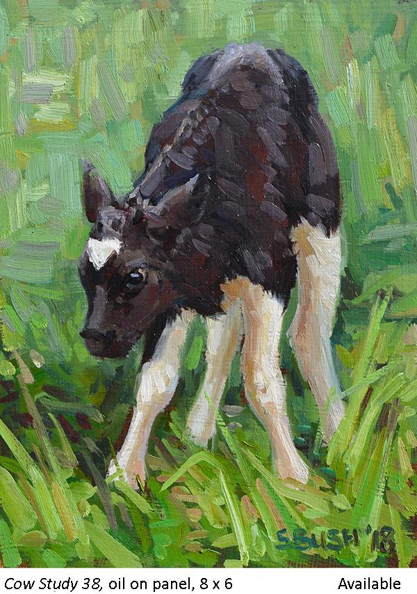 Cow Study 38_t2.jpg