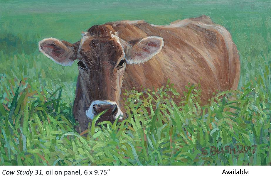 Cow Study 31_t2.jpg