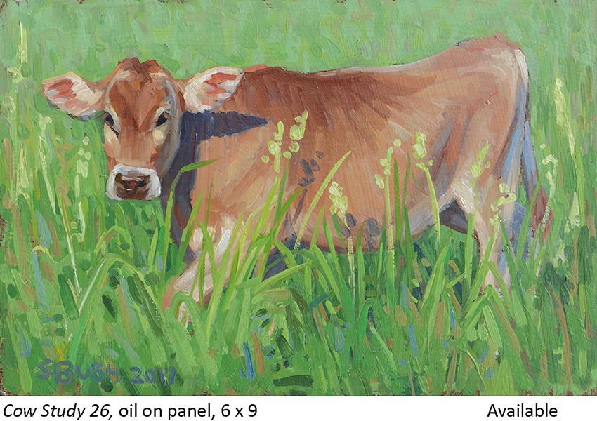 Cow Study 26_t2.jpg