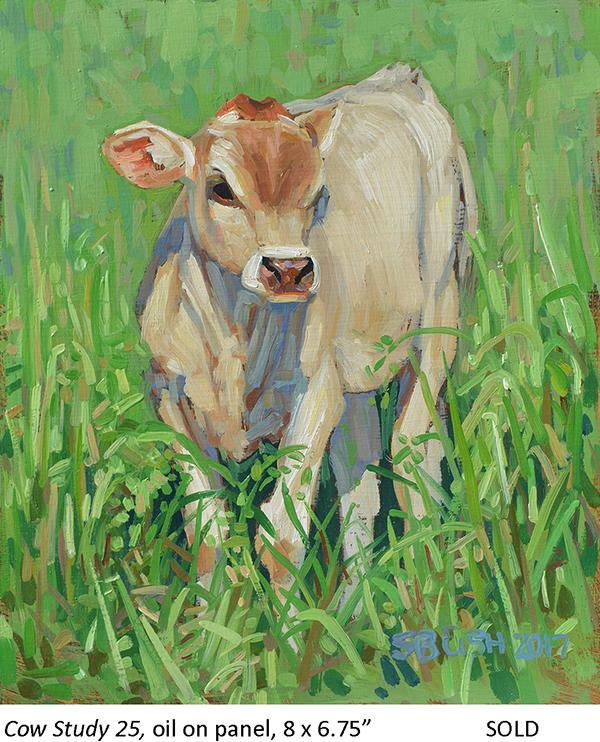 Cow Study 25_t4.jpg