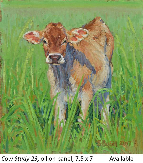 Cow Study 23_t2.jpg