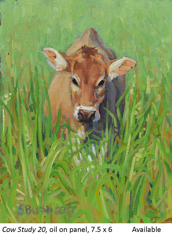 Cow Study 20_t2.jpg