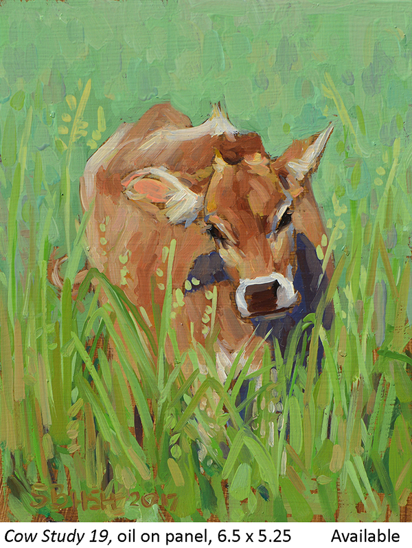 Cow Study 19_t2.jpg