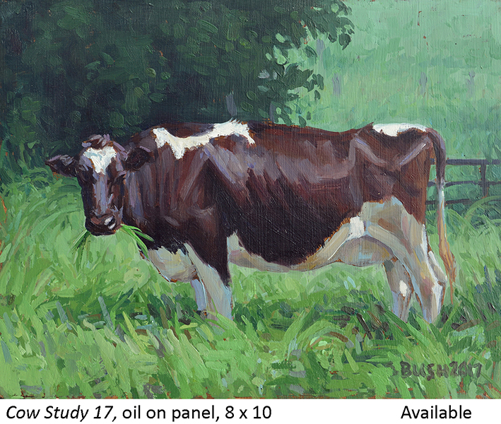 Cow Study 17_t2.jpg