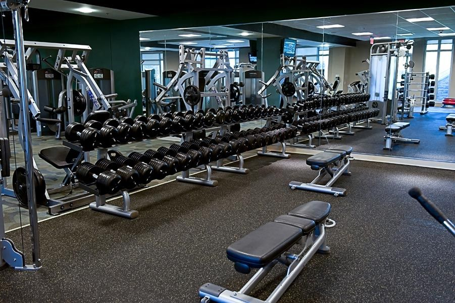 free-weights-in-the-gym.jpg