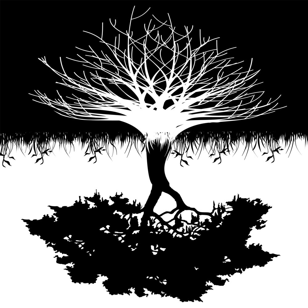 Black and white tree and roots DOWN.jpg