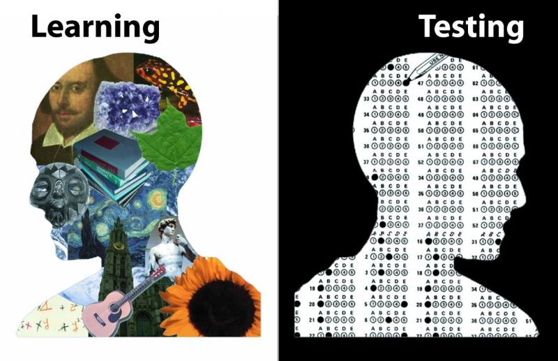 learning-testing.jpg