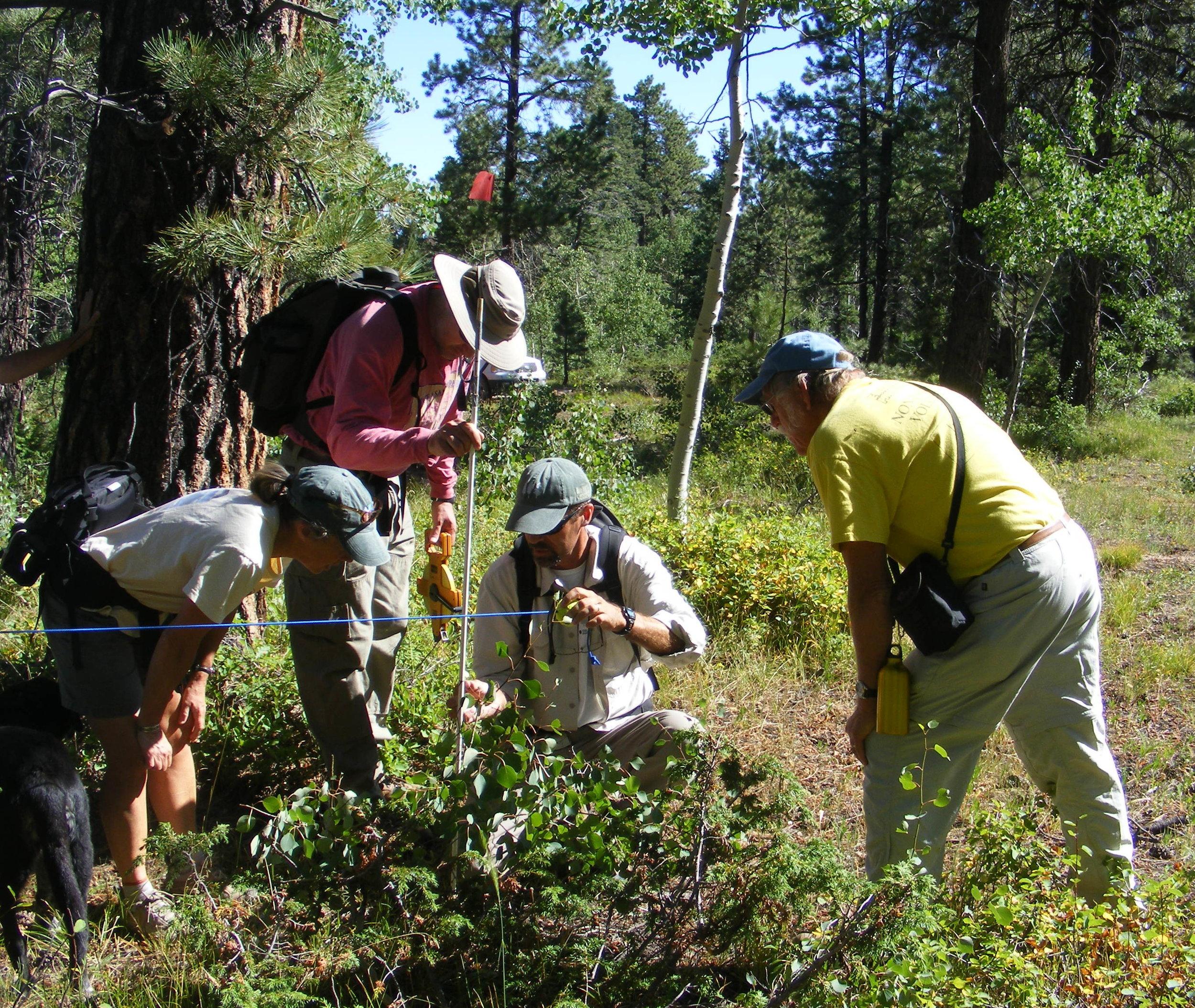 Scientific Research and Monitoring - Western Colorado Landscape Collaborative