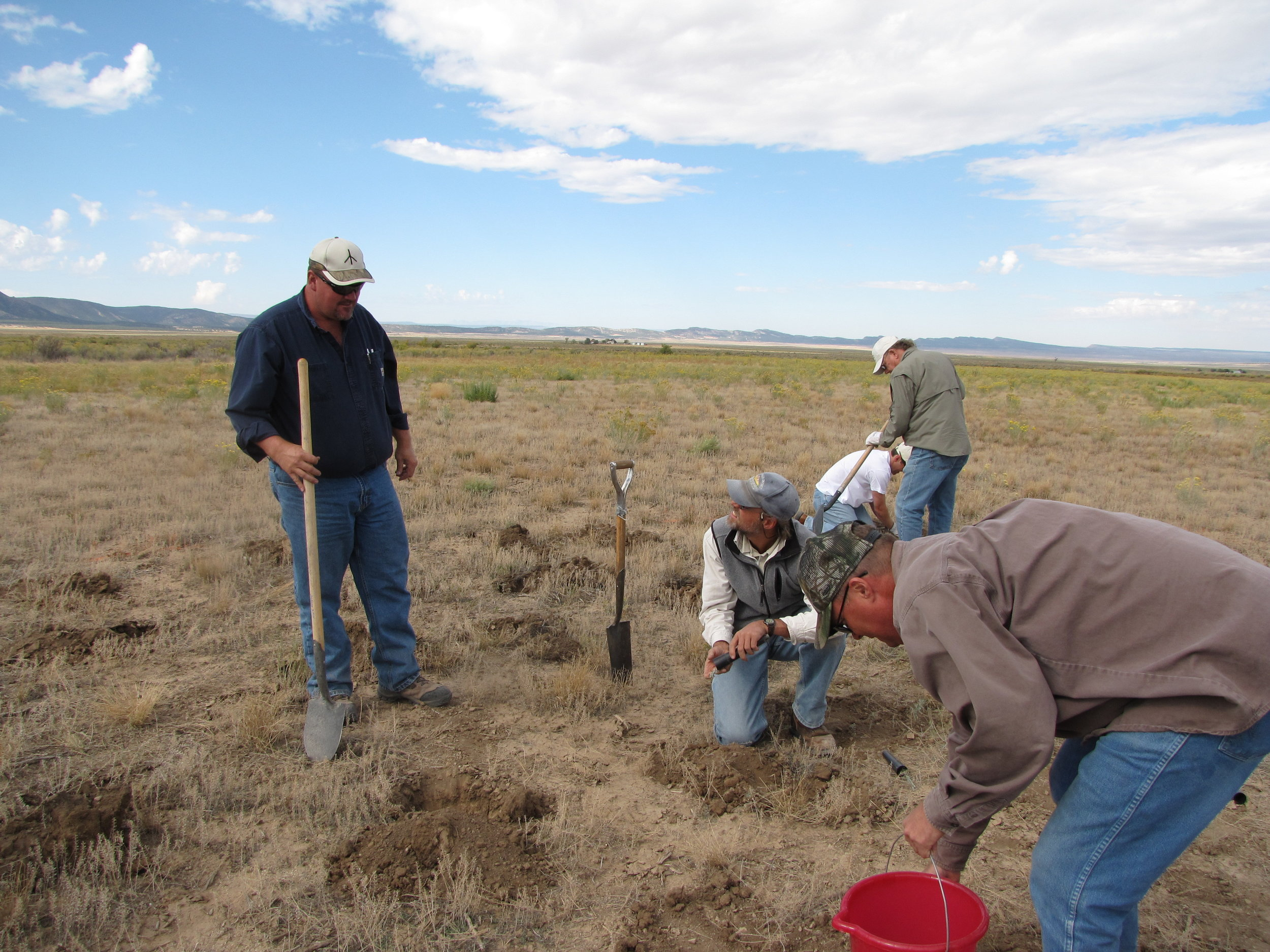 Planting sagebrush seedlings in Dry Creek Basin.