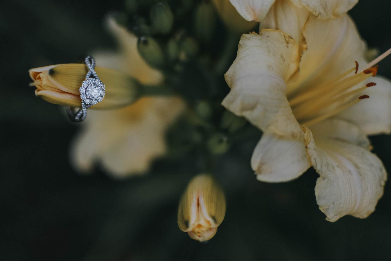 Kingsport TN Photography, Johnson City TN Photography, Bristol TN Photography