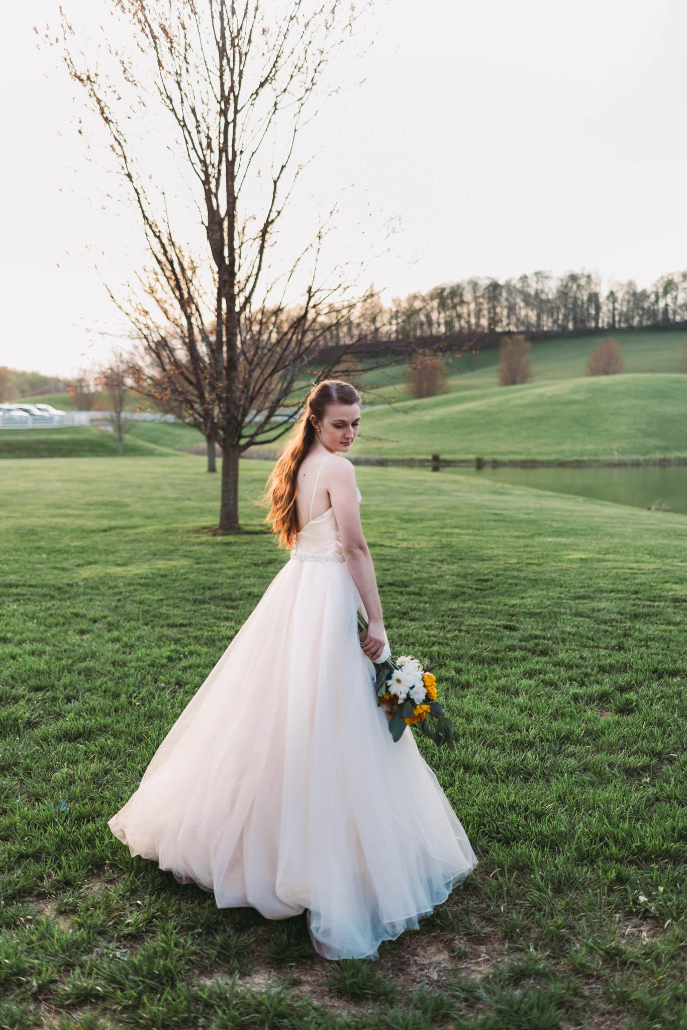 Grace Meadows Farm Wedding, Jonesborough, TN, Northeast TN Wedding Photographer, East Tennessee Wedding Photographer, Knoxville, TN Wedding Photographer (1 of 1)-8.jpg
