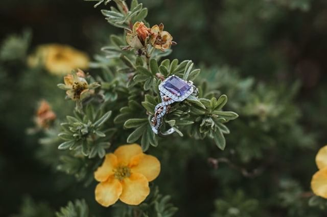 Oh, boy, do we love this ring! It definitely fits our brides personality! Do you have a unique engagement ring? ⁣ .⁣ .⁣ .⁣ .⁣ #lakynhayesphotography #thewilliamscreative #greenweddingshoes #chasinglight #easttnweddingphotographer #kingsportphotographer #bohowedding #johnsoncityphotographer #bohobride #weddinginspo #southernweddings #tennesseeweddingphotographer #easttnphotographer #mountainwedding #kingsportweddingphotographer #romanticwedding #johnsoncityweddingphotographer #tennesseephotographer #southernwedding #tennesseeweddings #smpweddings #virginiaphotographer #tennesseephotography #virginiaweddings #northcarolinaphotographer #southcarolinaphotographer #northcarolinaphotography #northcarolinaweddings #southcarolinaphotography