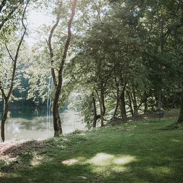Loving the views and vibe at the Abingdon Vineyard! We caught up with Pam & Garrett for their reception here in July and couldn't resist the dreamy lake backdrop! . . . . #lakynhayesphotography #thewilliamscreative #greenweddingshoes #chasinglight #theknot #easttnweddingphotographer #bohowedding #kingsportphotographer #weddingphotographer #bohobride #johnsoncityphotographer #weddingseason #southernweddings #weddinginspo #tennesseeweddingphotographer #easttnphotographer #kingsportweddingphotographer #mountainwedding #romanticwedding #johnsoncityweddingphotographer #tricitiestnphotographer #weddingwire #coloradowedding #weddingstyle #southernbride #risingtidesociety #ohwowyes #littlethingstheory #loveauthentic #lookslikefilm