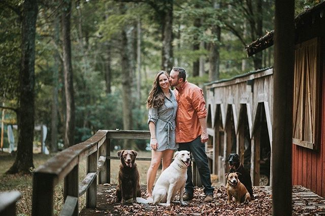 The perfect example of why you should bring your dogs to your engagement session! Loved hanging out with these 6!  #lakynhayesphotography #thewilliamscreative #greenweddingshoes #chasinglight #theknot #easttnweddingphotographer #bohowedding #kingsportphotographer #bohobride #johnsoncityphotographer #loveintentionally #elopementphotographer #destinationweddingphotographer #stylemepretty #smpweddings #loveauthentic #featuremeoncewed #risingtidesociety #junebugweddings #weddingseason #intimatewedding #elopement #lookslikefilm #huffpostido #soloverly #photobugcommunity #ohwowyes #portraitcollective #indiebride #ruffledblog