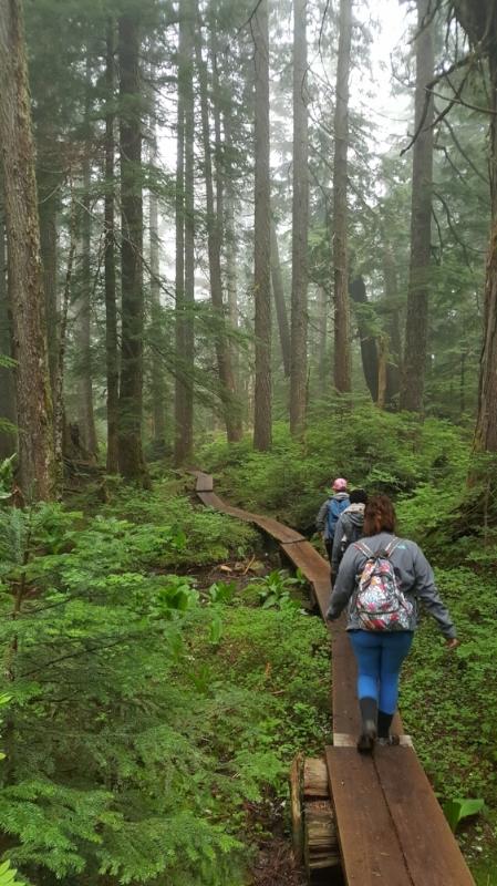 ashland trail 2.jpg