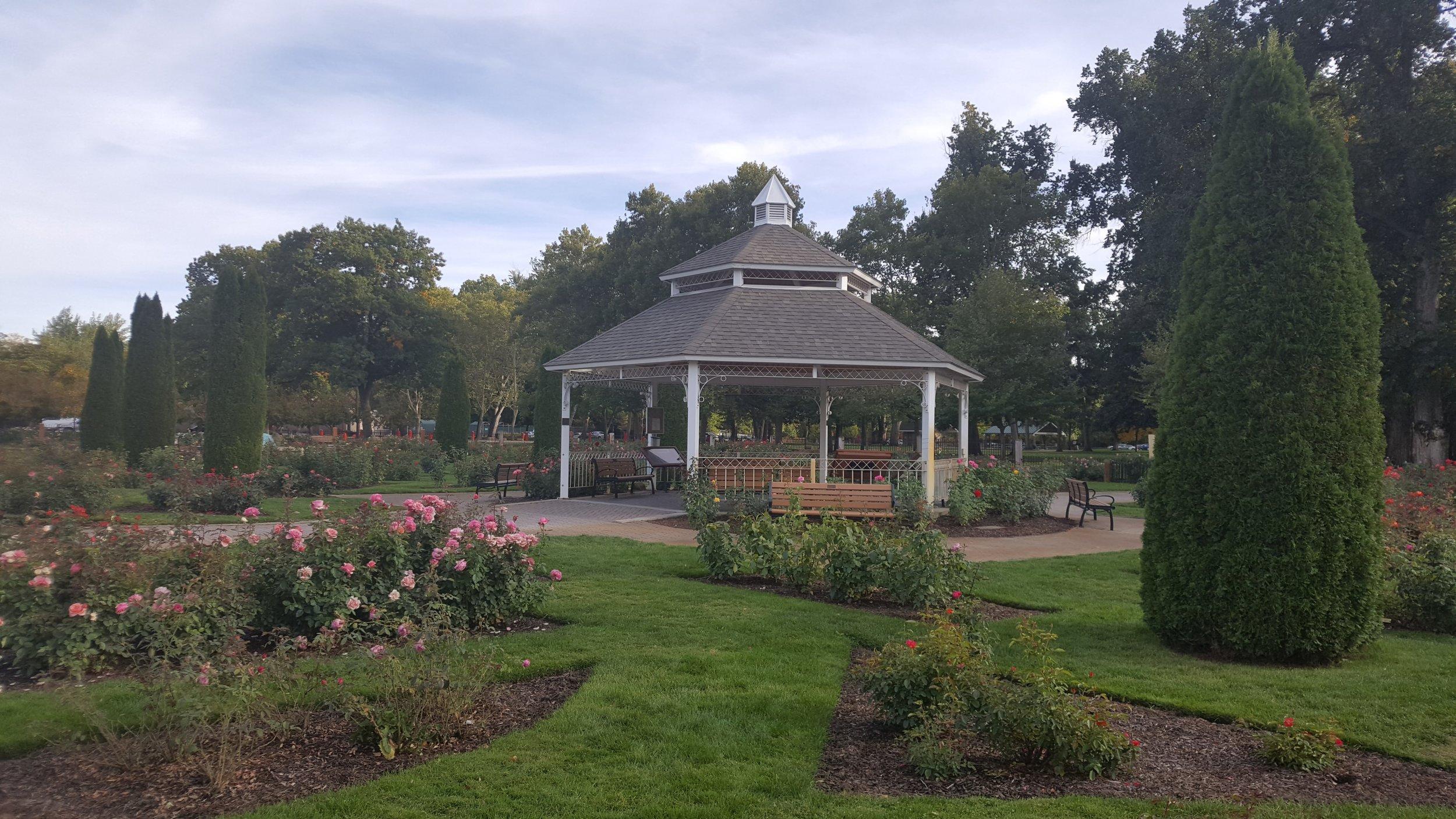 rose garden4.jpg