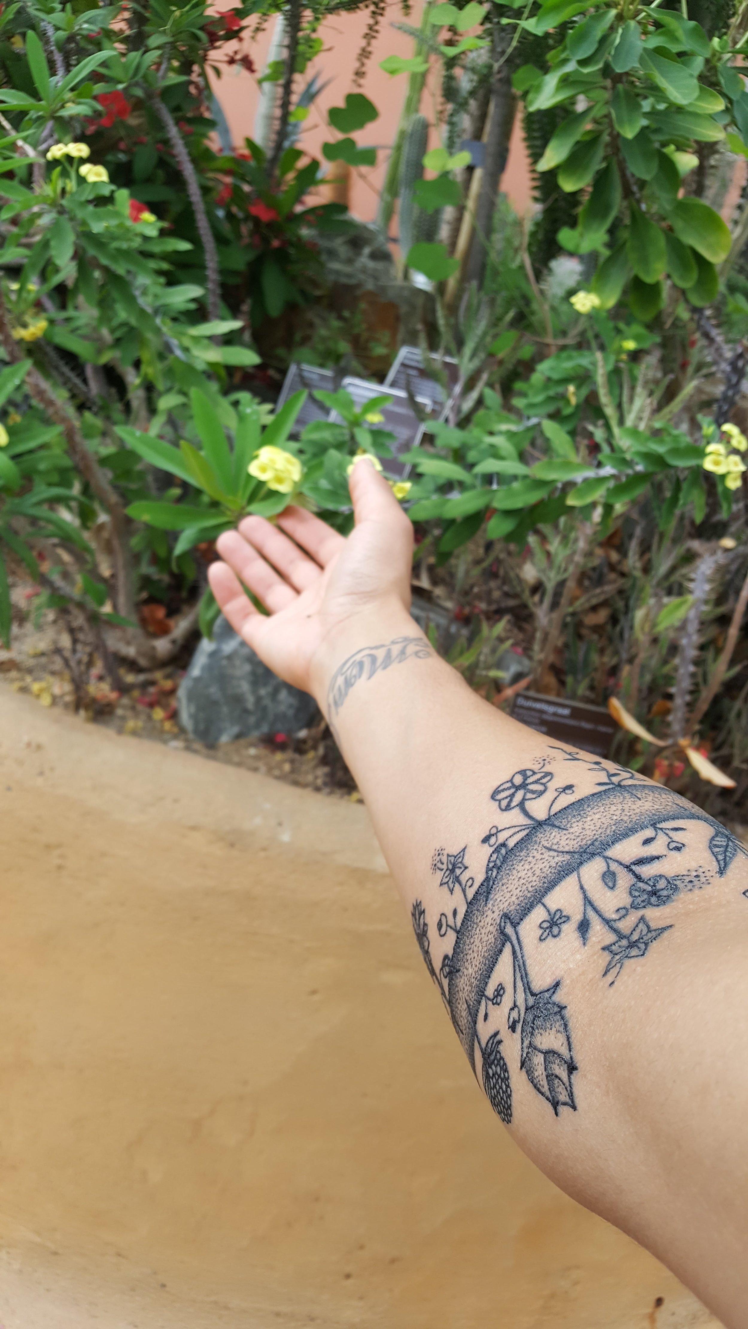 amsterdam tattoo.jpg