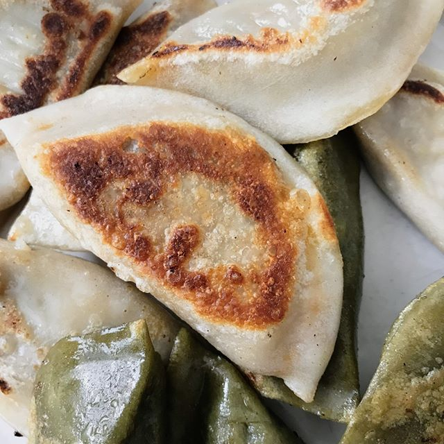 Can you hear the crunch? 🤗🤗🤗 #happakitchen #dumplings #potstickers #comfortfood