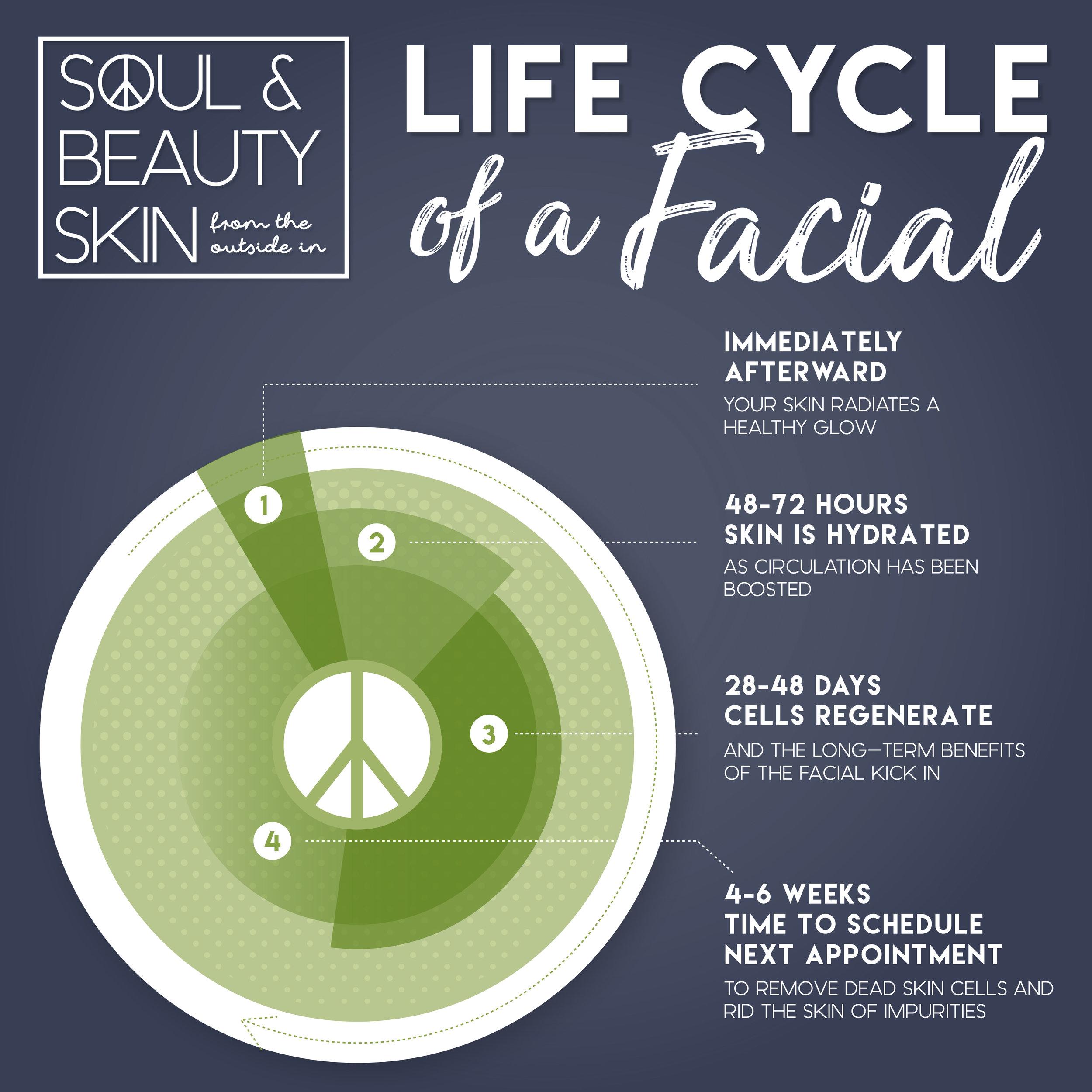 Life Cycle of Facial.jpg