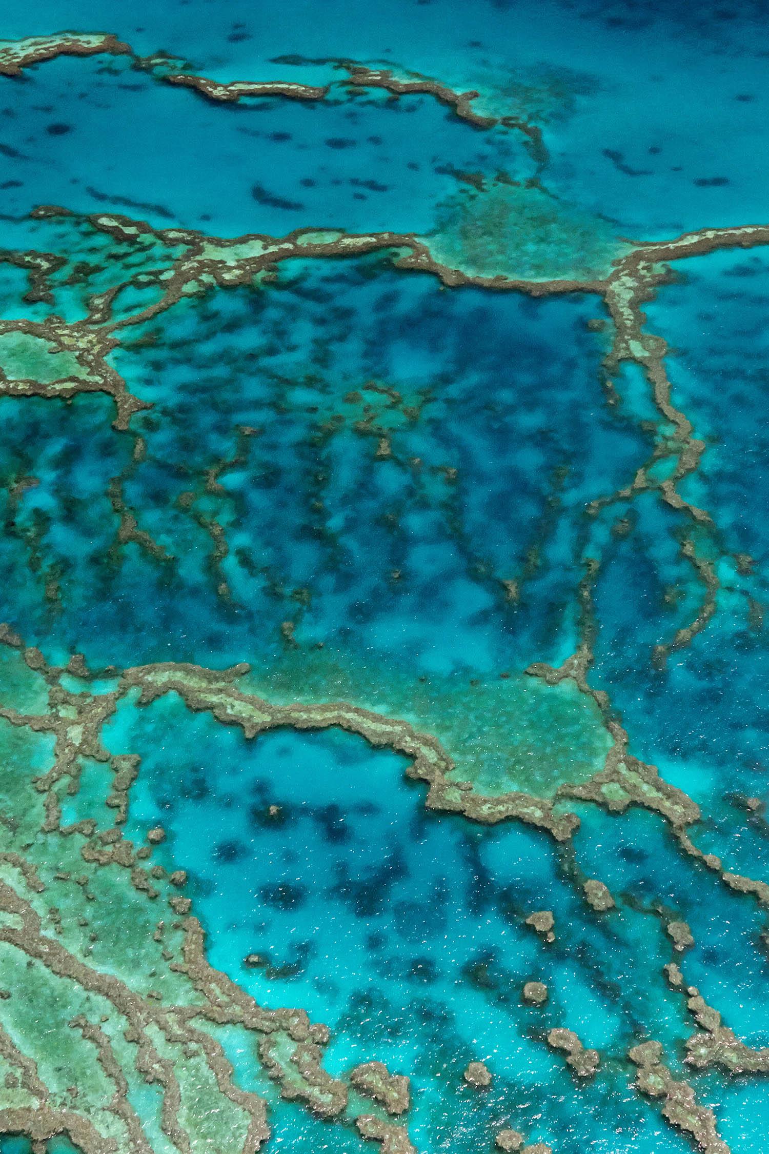 Great_Barrier_Reef_Vertical_web.jpg