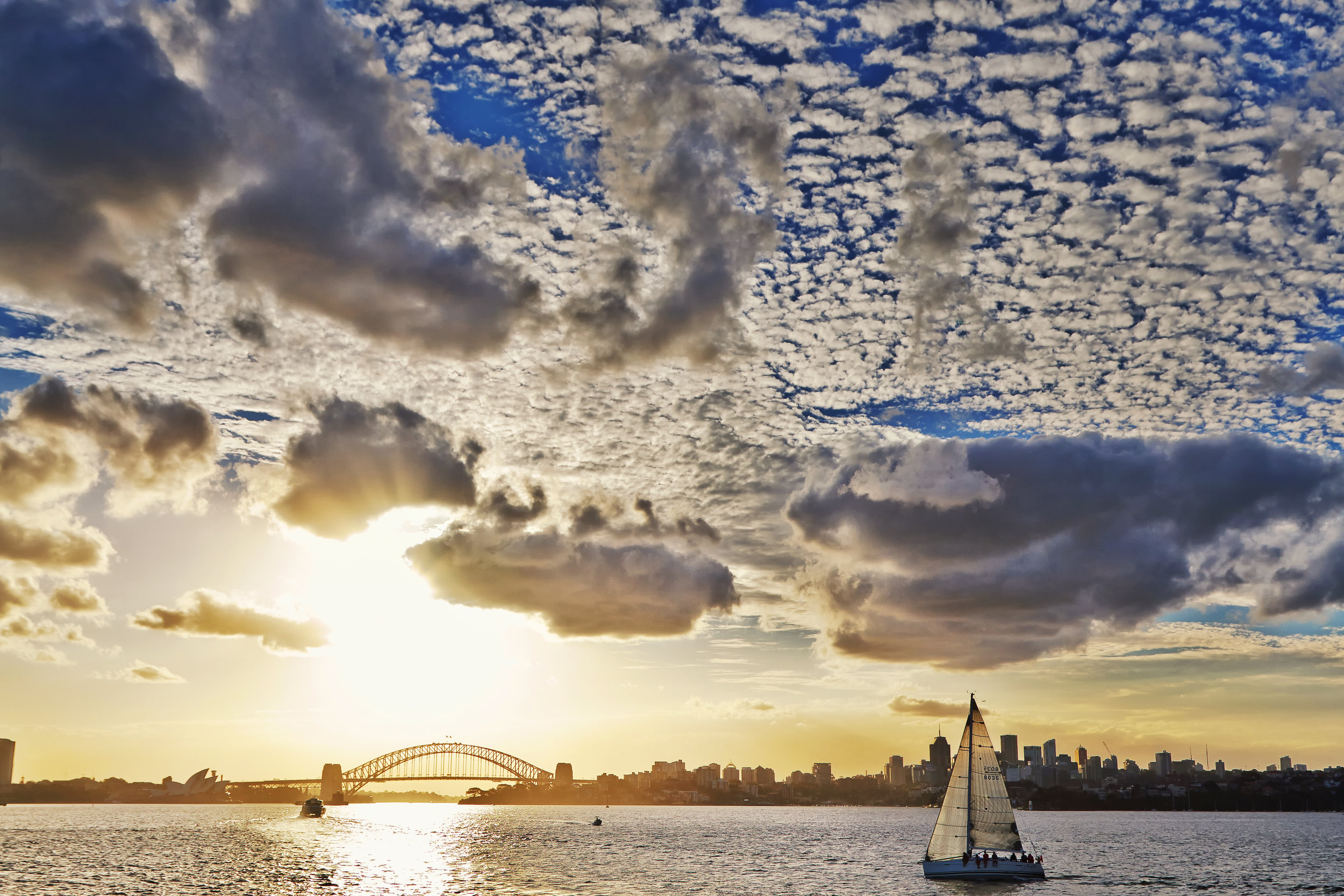 Sailing Sydney FINAL.jpg