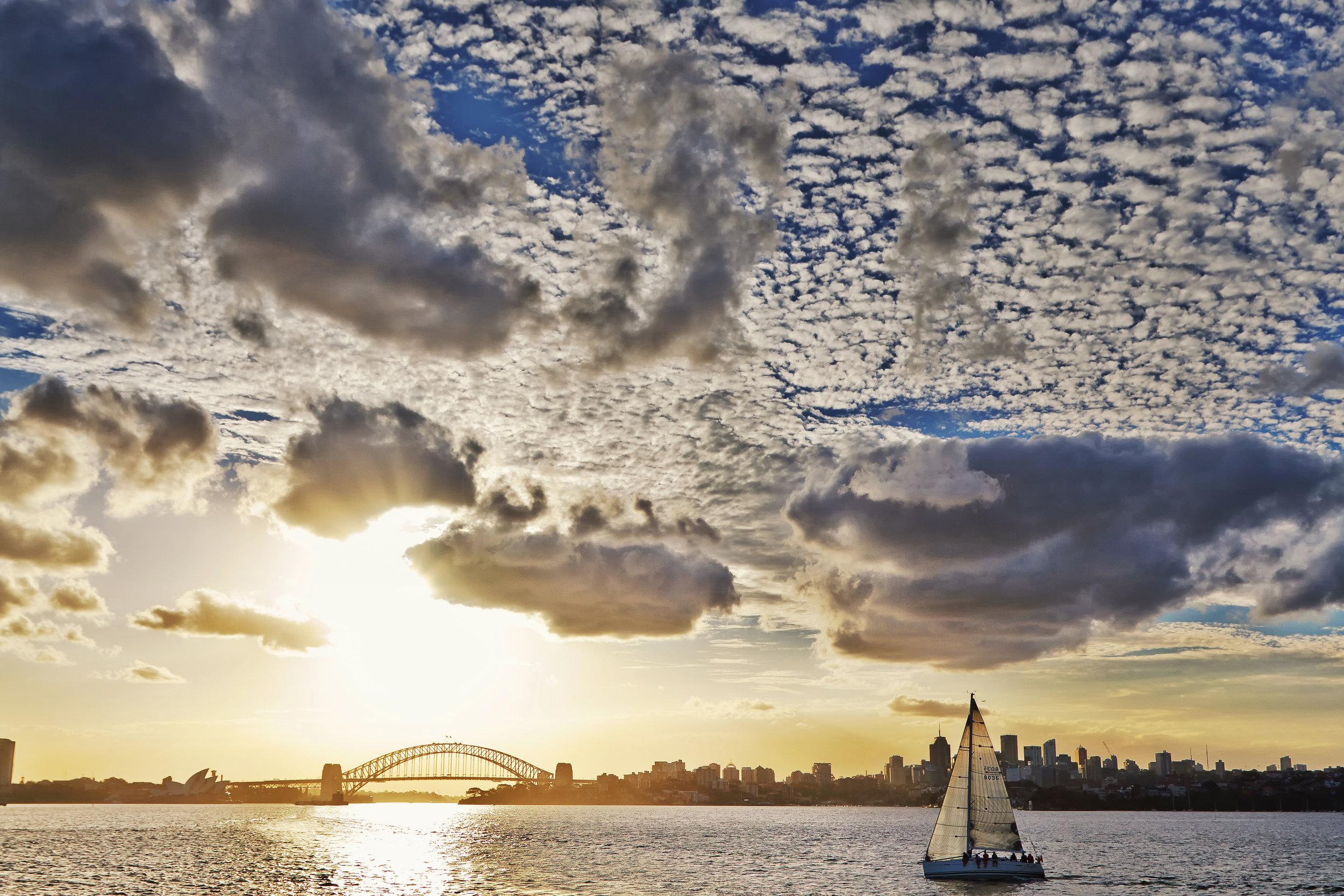 Sailing_Sydney_FINAL.jpg