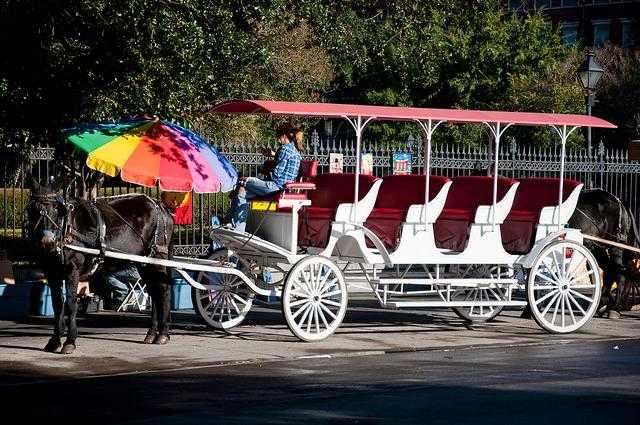 French_Quarter_Carriage_Ride-New_Orleans-LA-7997f9477bab43bcbd5a7d0e286783bc_c.jpg