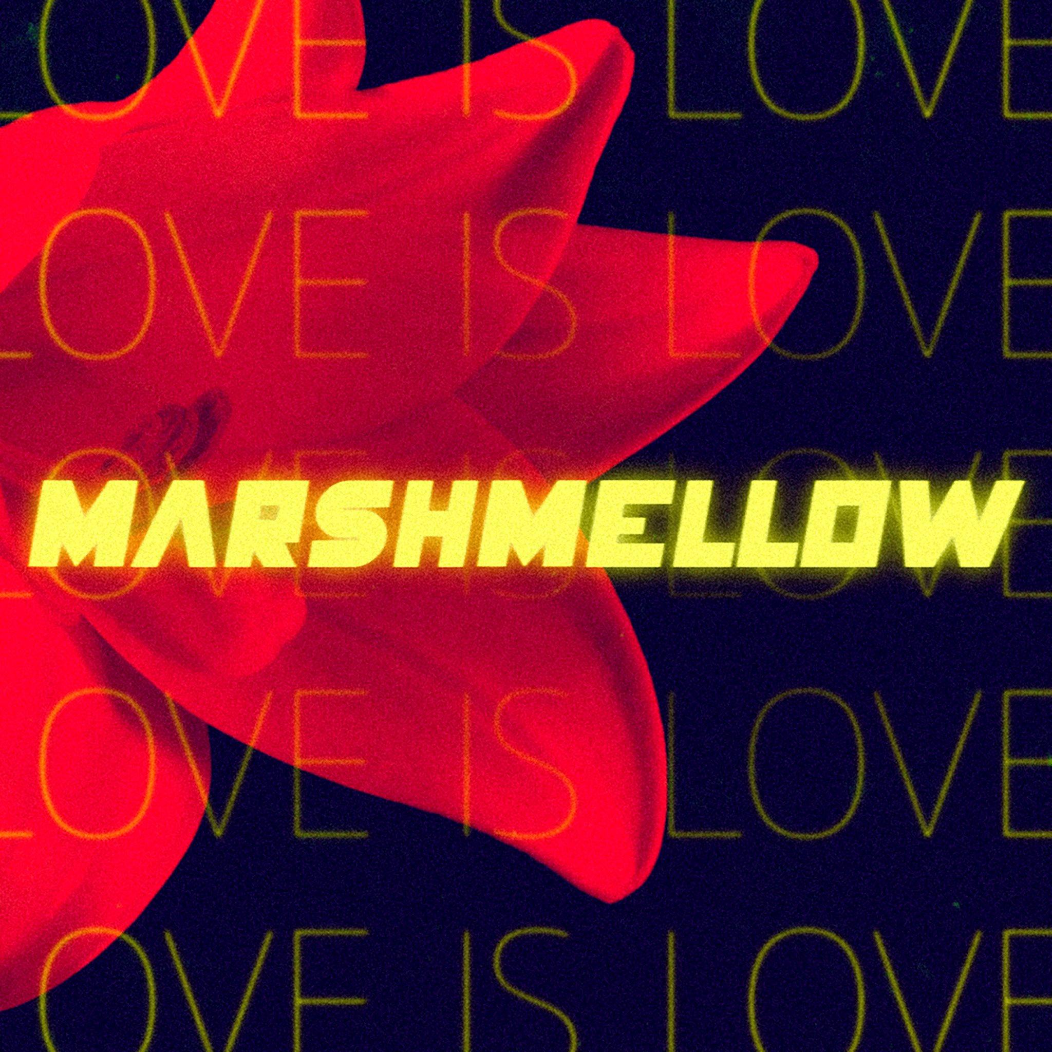 Marshmellow Love Is Love HR.jpg