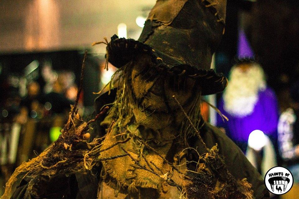 Stitch scarecrow.jpg
