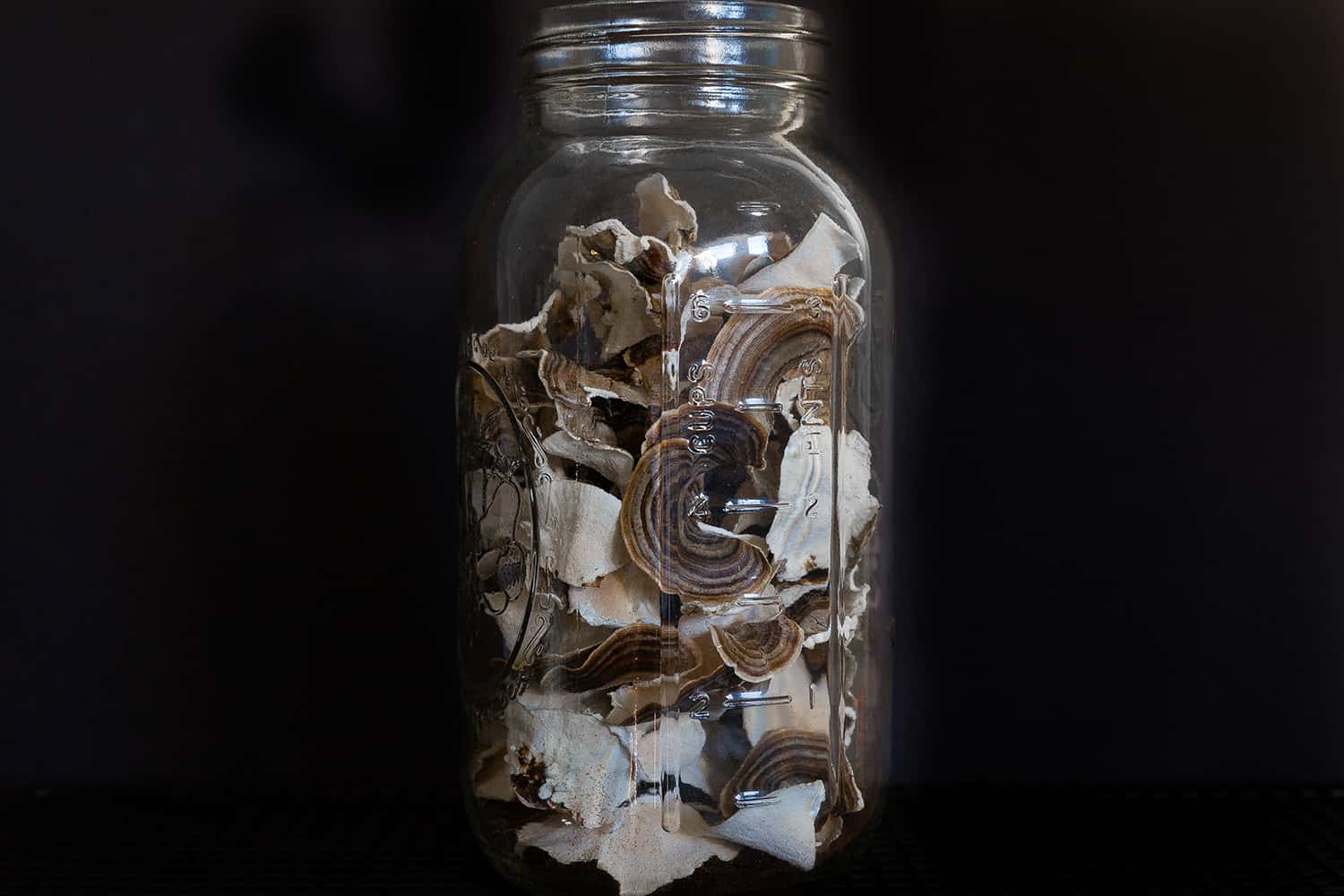 Portland florist stores dried Turkey Tail mushrooms in glass canning jar for longterm storage