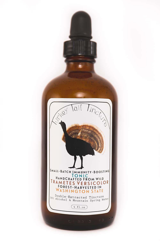 Portland-Florist-Turkey-Tail-Mushroom-65.jpg