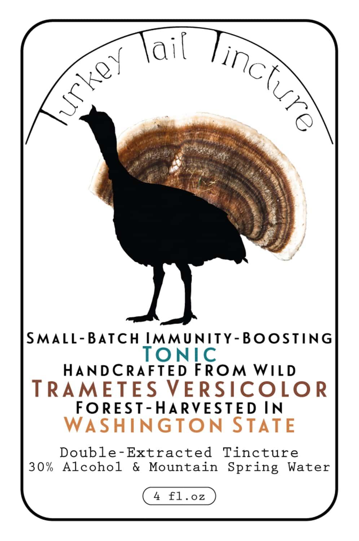 Portland-Florist-Turkey-Tail-Mushroom-68.jpg