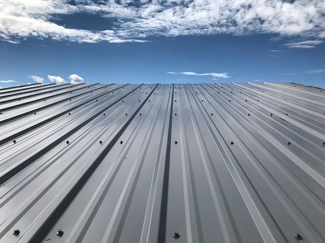 Shoam got our roof on the studio earlier this week - just in time to get rained on pretty good last night. And we've realized we never want to build anything taller or steeper than the studio, but the loft view is going to be worth it for sure!