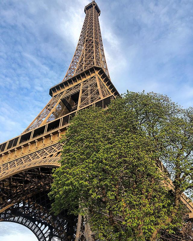 The Eiffel Tower is a thicc girl What an absolute unit She c h o n k  Look at the size of this lady  OH LAWD SHE COMIN ———————————————— Please tell me you've seen the sea otter Abby post/meme that I'm referring to and if not, google it now. Another Internetism !