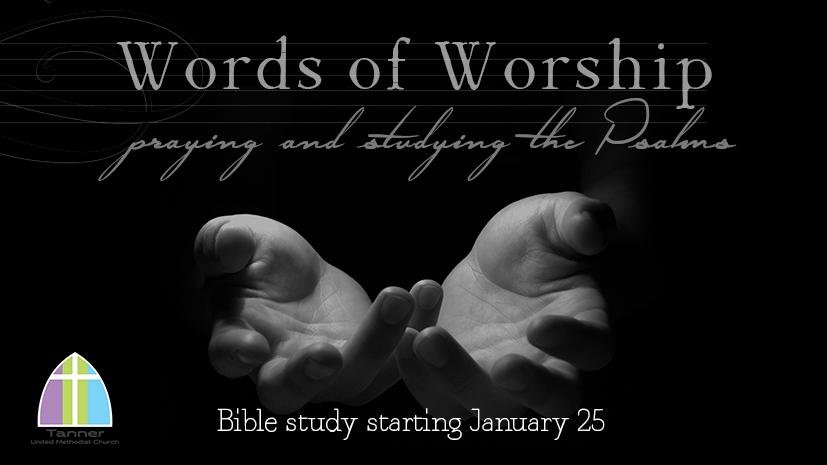 Words of Worship FB.jpg