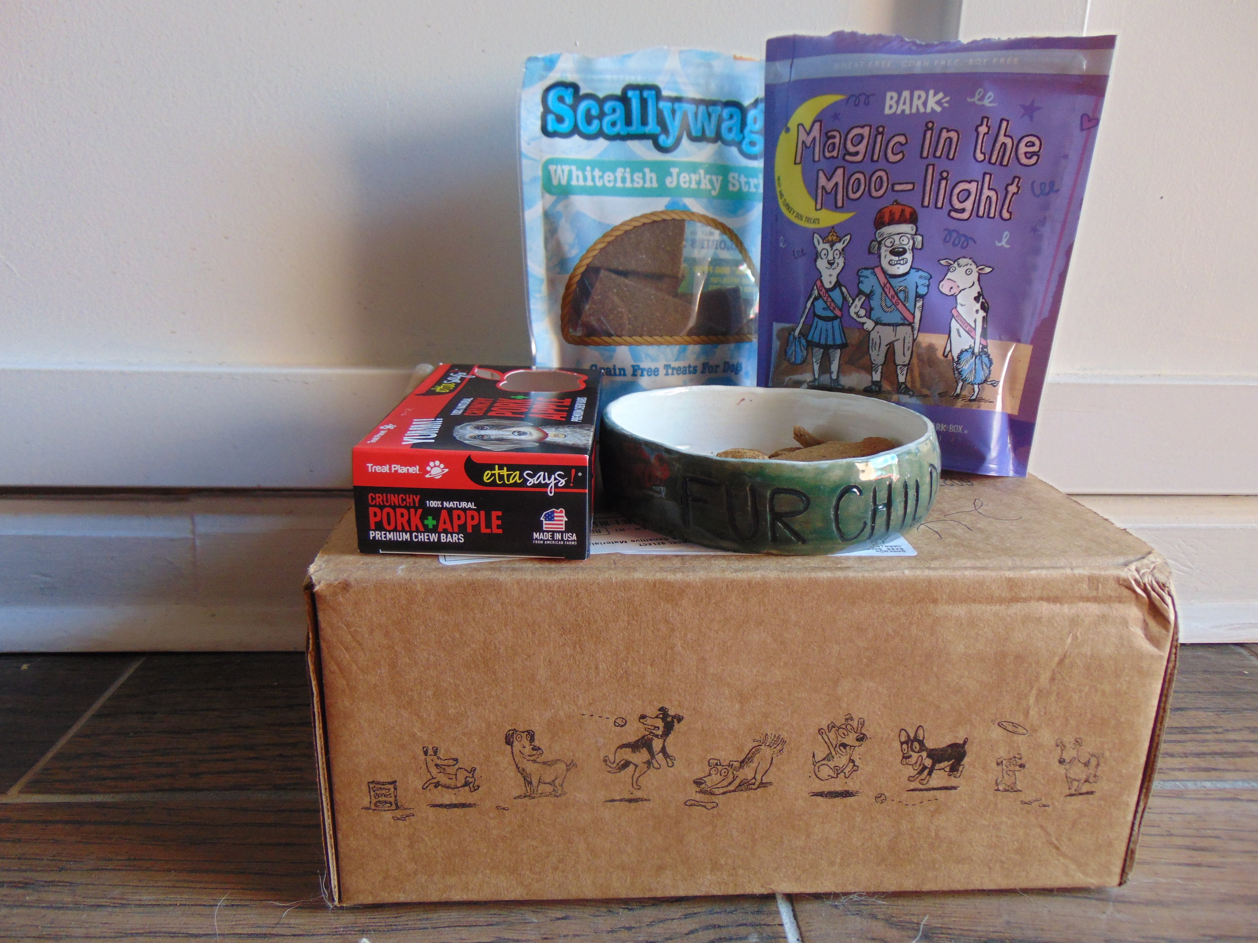 "All of the BarkBox treats this month with the ""Fur Child"" Dog Dish by The Clay Moon."