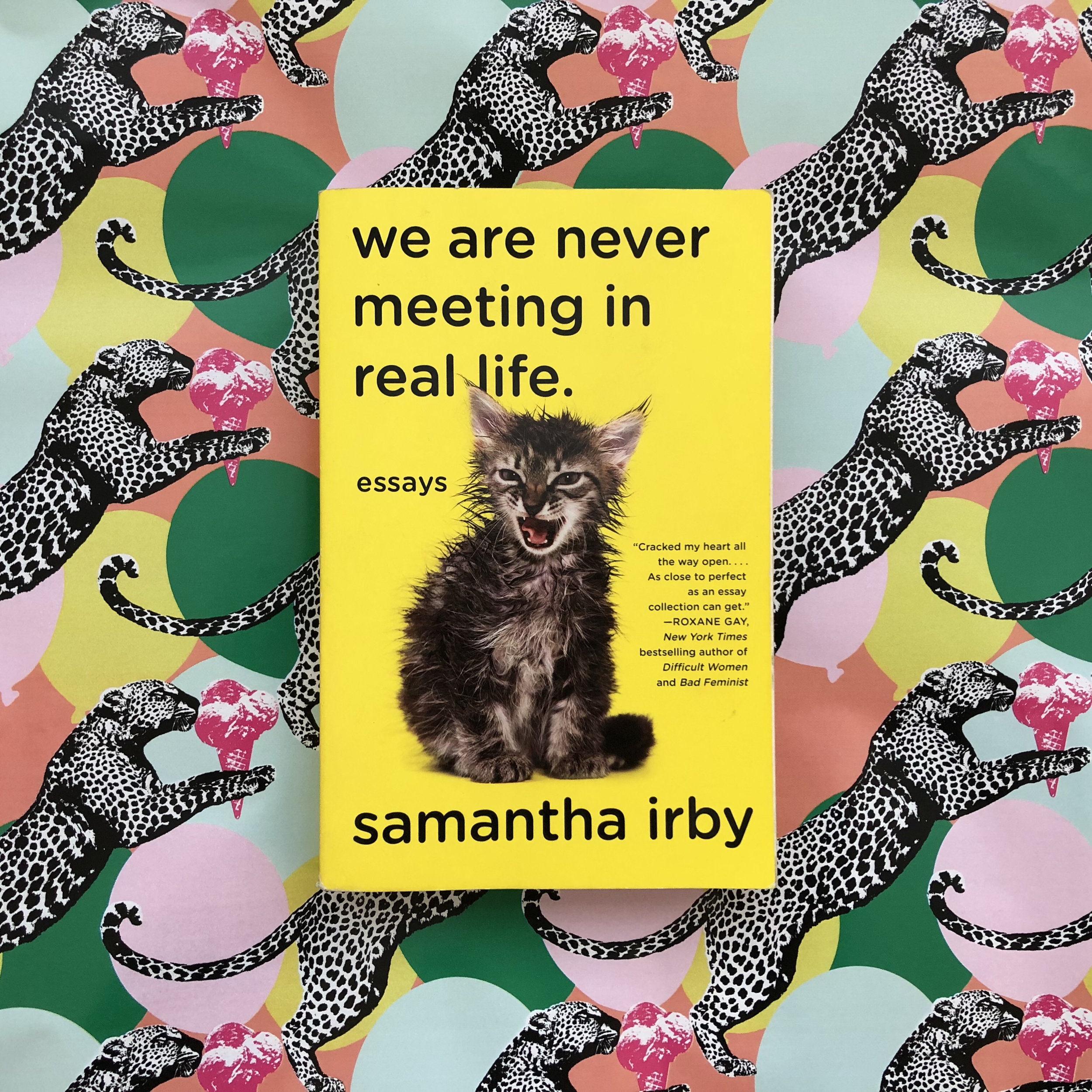 we are never meeting in real life review samantha irby